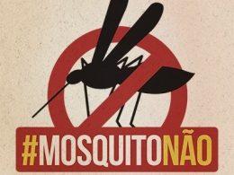 Ministério da Saúde convoca estados e municípios para combater o mosquito Aedes Aegypti