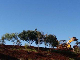Antigo Campo do Lutador se tornará em área de lazer