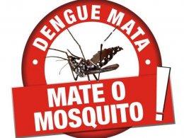 Focos de larvas do Mosquito da Dengue são encontrados em Estação