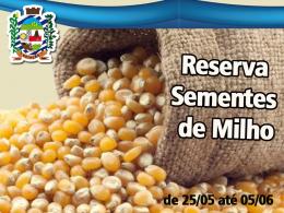 Reserva de Sementes de Milho Safra 2020/2021