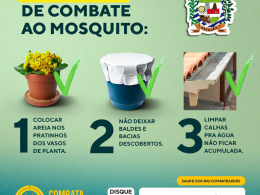 COMBATE AO MOSQUITO DA DENGUE!
