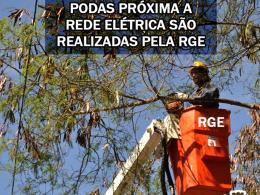 ORIENTAÇÃO SOBRE PODAS PRÓXIMAS A REDE ELÉTRICA